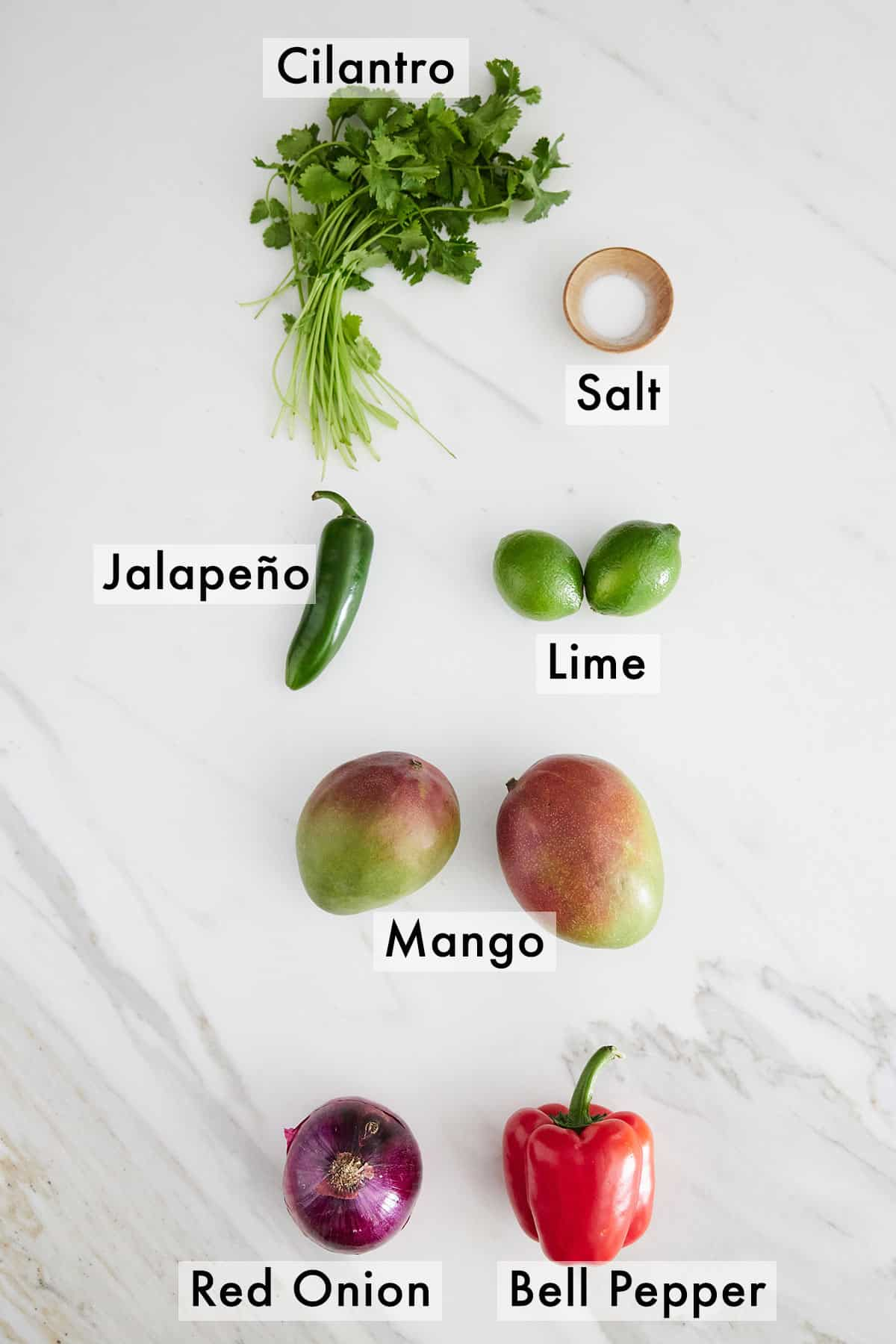 Overhead photo of ingredients needed to make mango salsa.