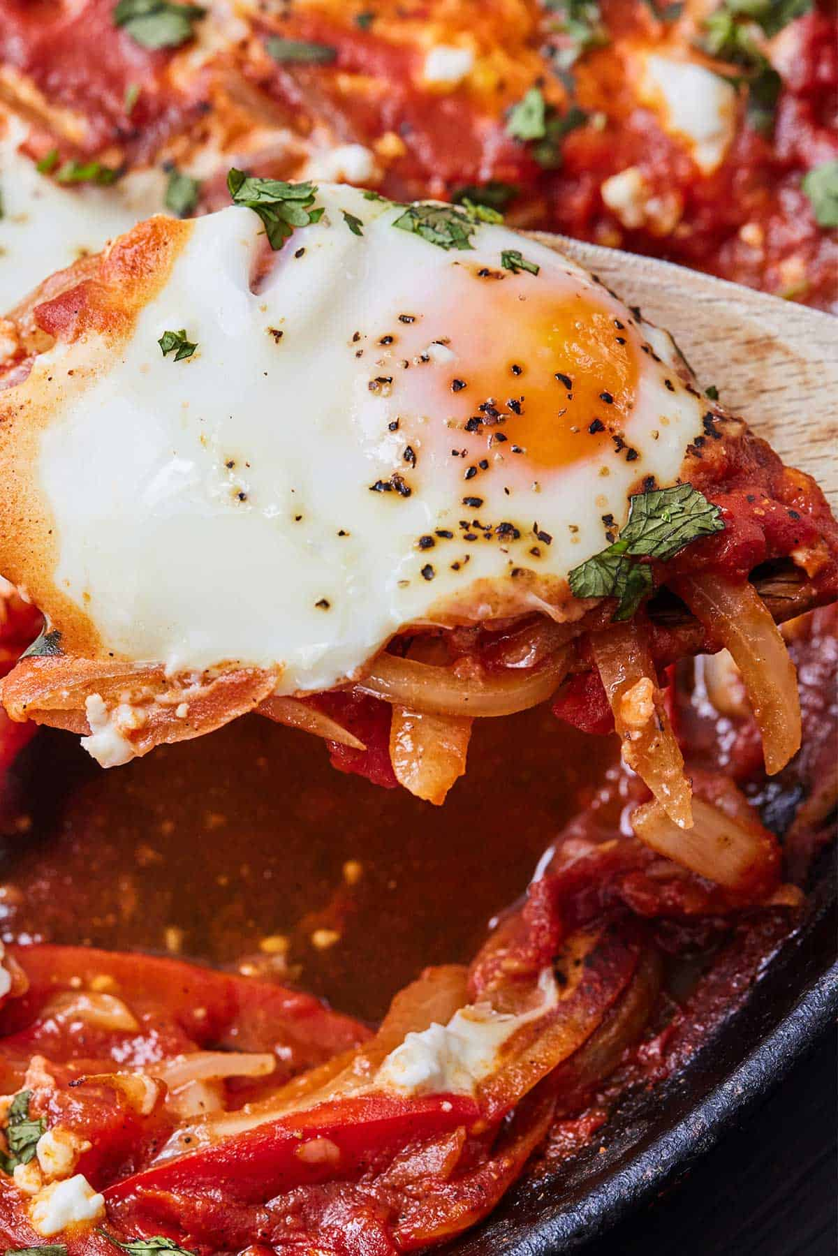 Close up of a spoonful of shakshuka's egg being lifted from the pan.