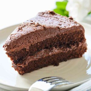 A plate of a two layer vegan chocolate cake on a plate with a fork on it.