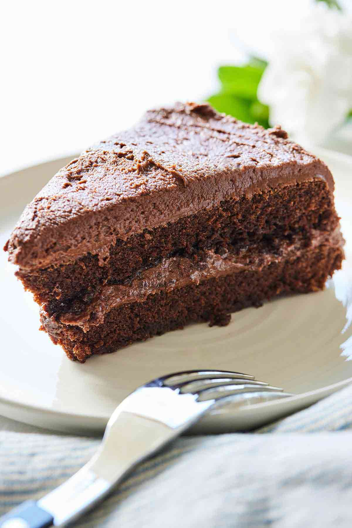 A plate of a slice of vegan chocolate cake with chocolate frosting.